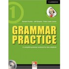 Grammar Practice Level 1